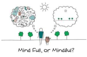 Mindfull or mindful