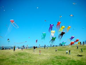 Fancilful kites
